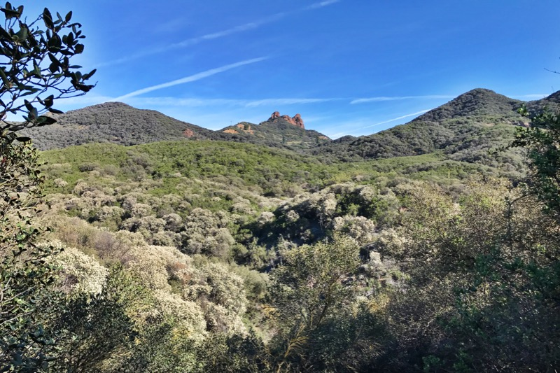 Day 9: Backbone Trail And The Santa Monica Mountains NRA